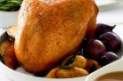 turkey buff